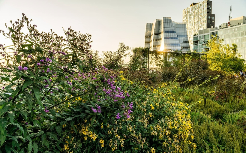 The High Line Manhattan